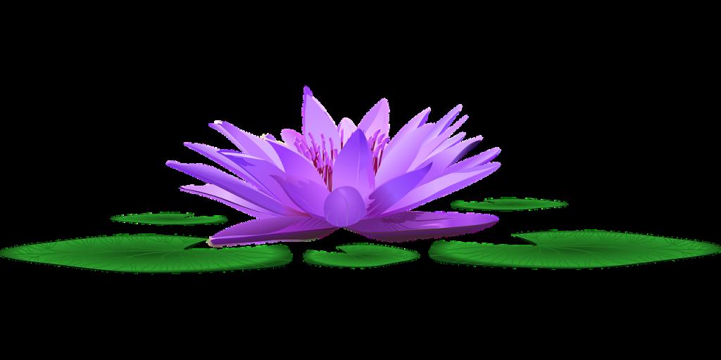 zabieg oczyszczania aury - wróżka Ksymena - Mistrz Reiki