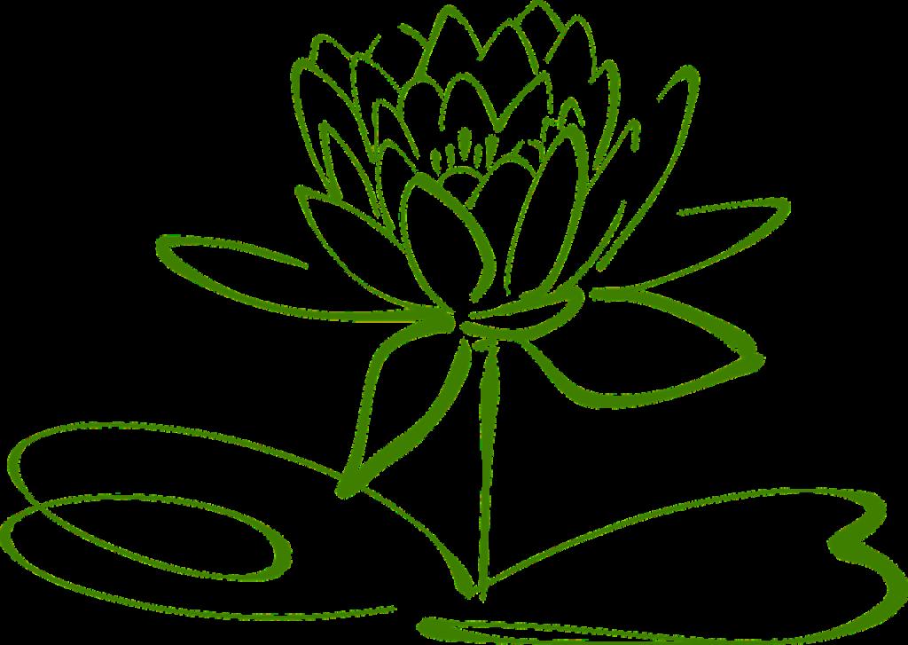 oczyszczanie energetyczne - wróżka Ksymena-Wielki Mistrz Reiki - klątwy, uroki, wampir energetyczny - oczyszczanie relacji - uzdrawianie relacji - odcinanie toksycznych osób
