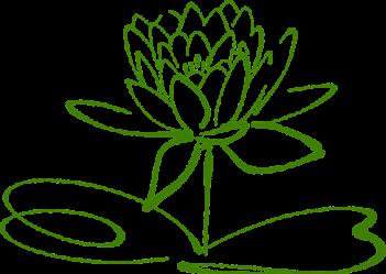 oczyszczanie energetyczne - wróżka Ksymena-Wielki Mistrz Reiki - oczyszczanie aury