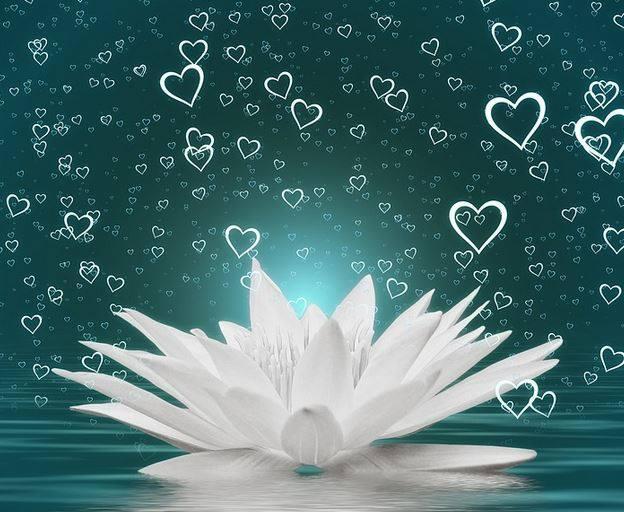 oczyszczanie energetyczne sprawi, że poczujesz sie jak biały lotos na tafli spokojnego jeziora - biały i czysty